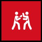 Tom's Fitness and Paris Martial Arts - self-defense